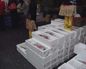 那珂湊お魚市場のお魚