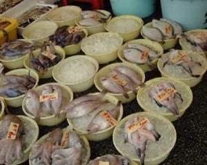 那珂湊お魚市場のお魚その2