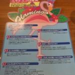 フラミンゴの説明
