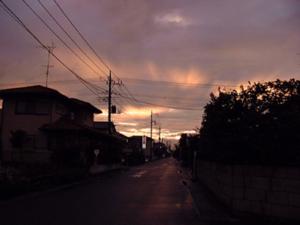 Vol.10「台風一過、幸手にて」<br />  (2003.8.9:埼玉県幸手市)